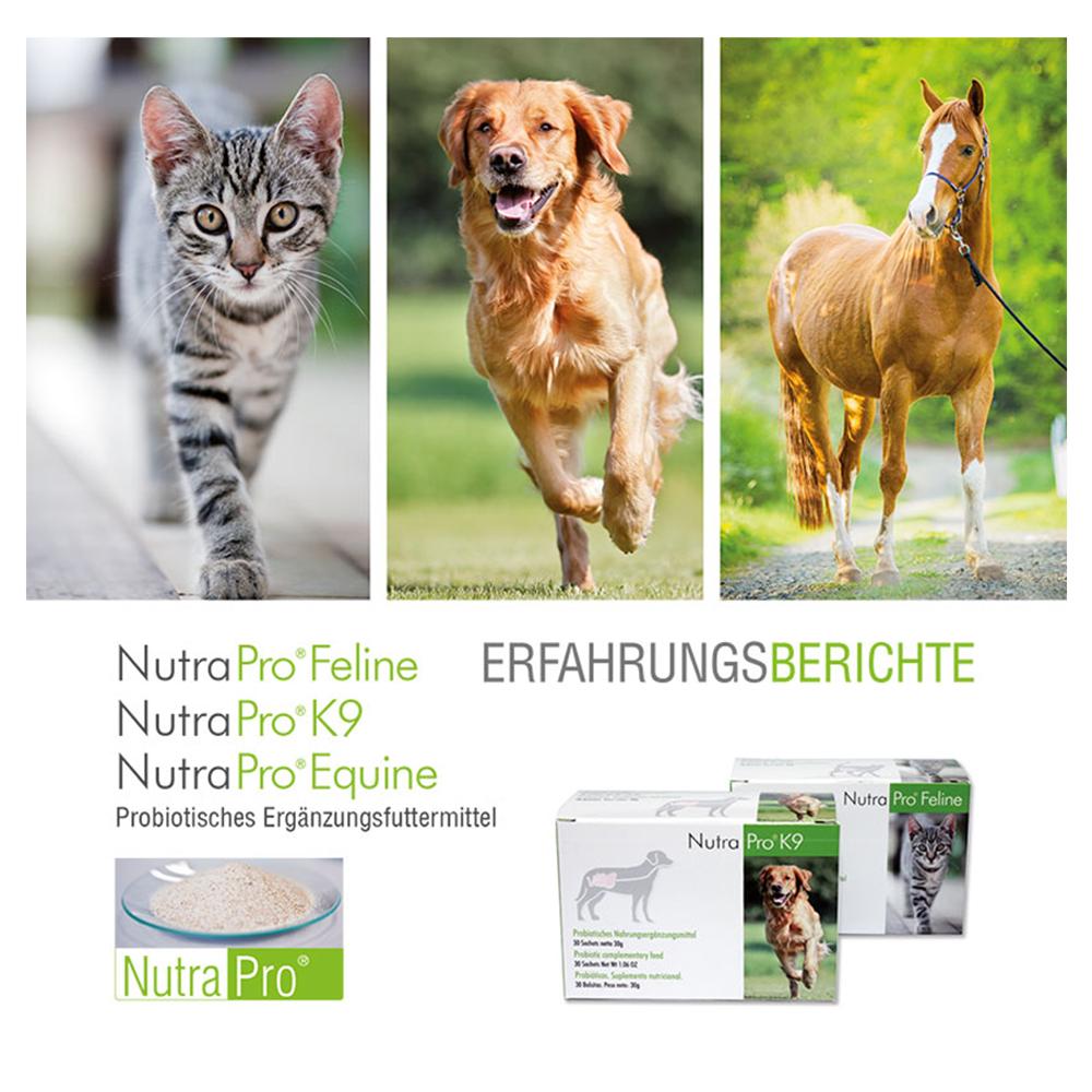 Erfahrungsberichte NutraPro